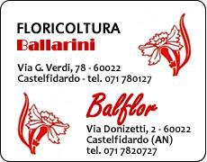 Immagine BAL FLOR - Ballarini Fabio